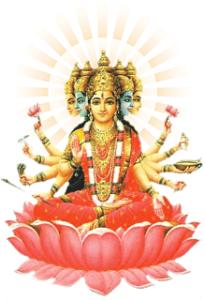 Gayathri-Devi2